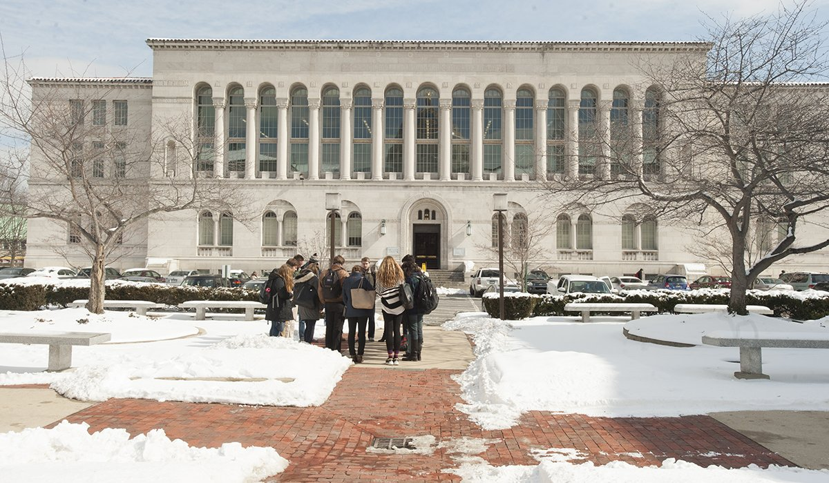 Library with snow