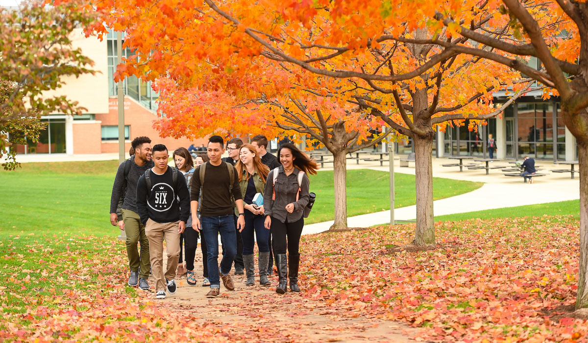Students walking under a fall tree