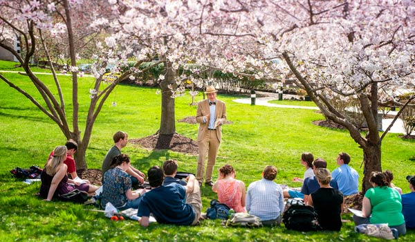 Professor lecturing to students under the cherry blossom trees on campus