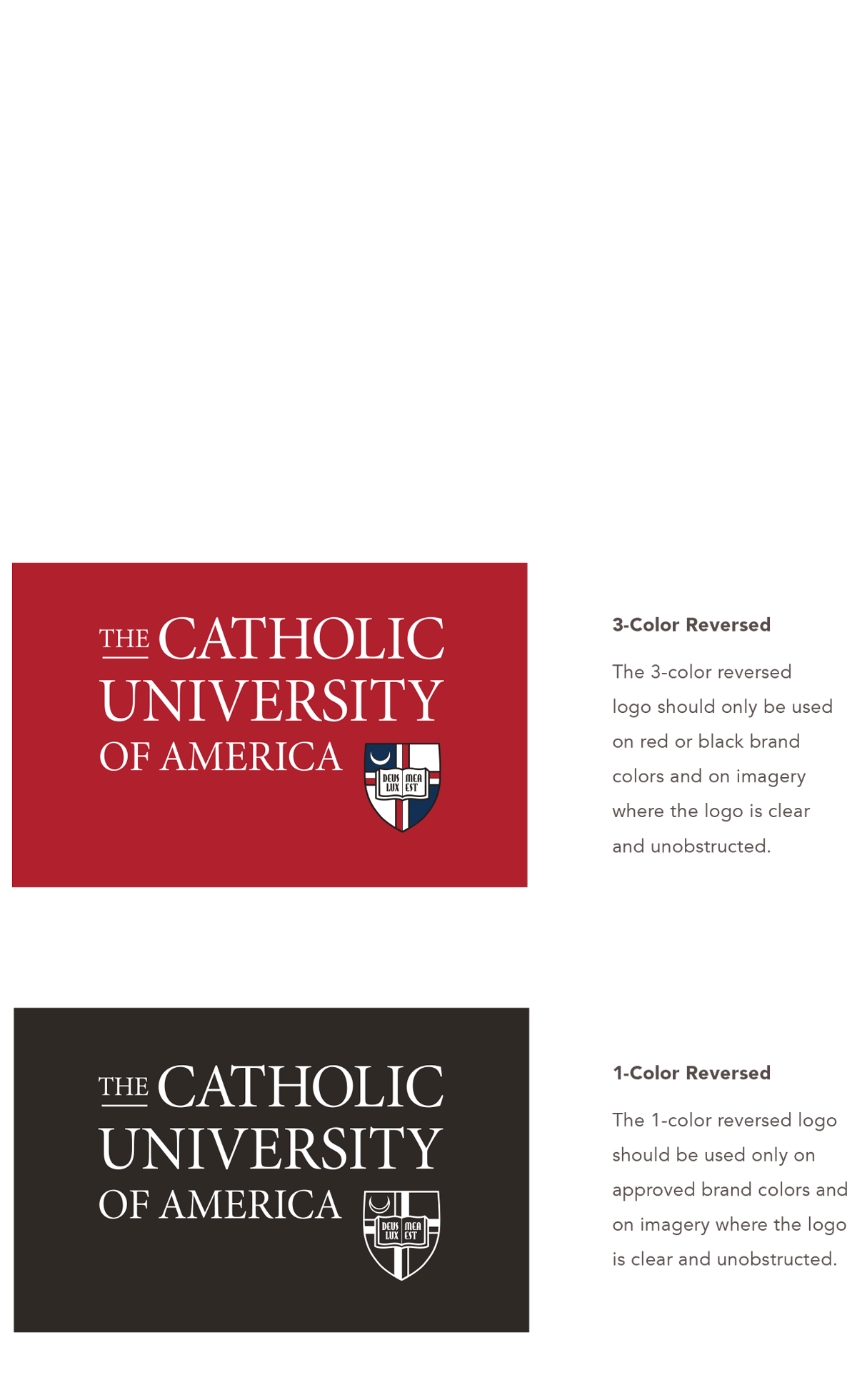 University Identity - logo color reversed