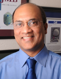 Venigalla B. Rao, Ph.D. Headshot