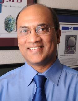 Venigalla B. Rao Ph.D. Headshot