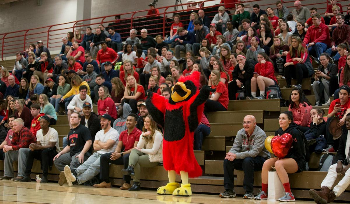 Catholic University basketball crowd