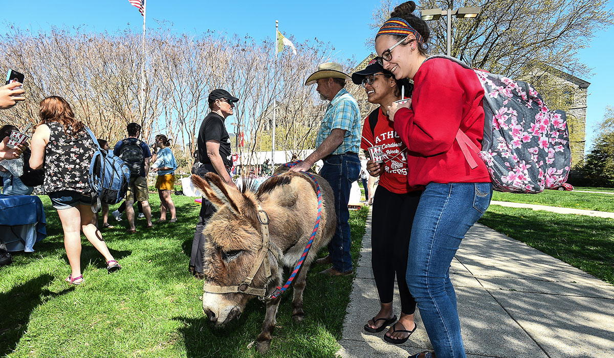 Students petting donkey on CUA Mall